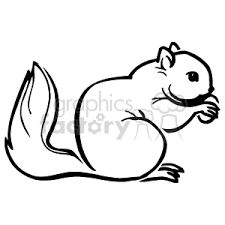 nut clipart black and white. royalty-free black outline of a squirrel eating nut 129502 vector clip art image - wmf illustration | graphicsfactory.com clipart and white