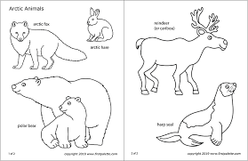 Browse free animal coloring pages & color the picture of your favorite animal. Arctic Polar Animals Free Printable Templates Coloring Pages Firstpalette Com