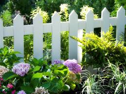 fence ideas that look great