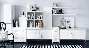 Ikea Living Room Storage Living Room Storage Furniture Luxurious Home Design