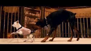 big dog diablo. [ img] big dog diablo e
