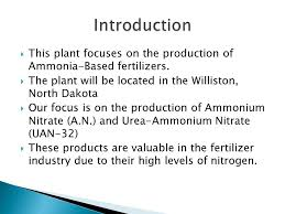 introduction this plant focuses on the ion of ammonia based fertilizers the plant will