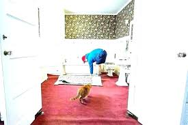cozy bathroom carpeting wall to wall marvelous wall to wall bathroom carpet 5 x 6 bathroom