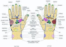 Reflexology Chart Reference Hand Reflexology Foot