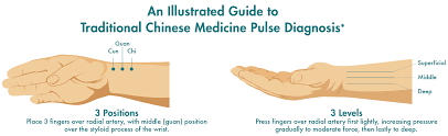 Pulse Power Understanding Pulses In Chinese Medicine