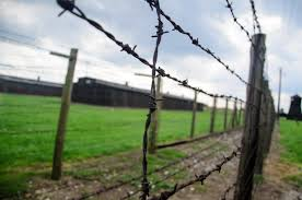 barbed wire fence concentration camp. Fence Barbed Wire Field Chimney Soil Agriculture Death Barbwire Camp Poland Prison Killing Ww2 Holocaust History Concentration
