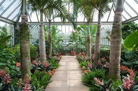 indoor gardening supplies. Indoor Garden Essentials Gardening Supplies I