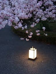 japanese garden lighting. Andon With Cherry Japanese Garden Lighting N