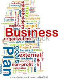 Writing A Business Plan For A Non Profit Organization 100