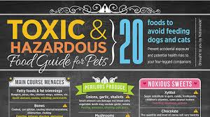 Toxic Food Guide For Pets