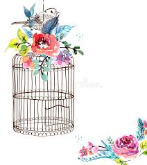 watercolor flowers and bird cage stock vector ilration of colorful retro 53831743
