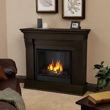 Wood Stove Living Room Design Interior Gel Fuel Fireplace And Faux Wood Burning Stove Also