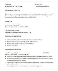 programmer sample resume