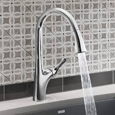 Professional Kitchen Faucet Blanco Meridian Semi Professional Kitchen Faucet Design Decor Best