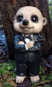 baby meerkat secret agent arts