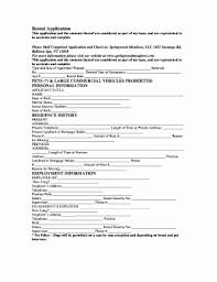 Tenant Credit And Background Check Collection Of Printable Sample
