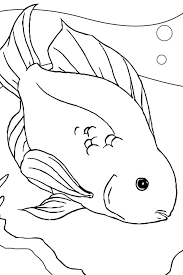 Betta Fish Coloring Pages Fish Coloring Pages Coloring Page For Kids