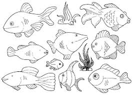 free coloring pages rainbow fish copy free printable fish coloring sheets free printable fish colouring gallery