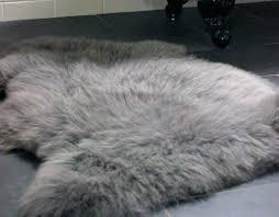 ideal sheepskin rug costco u29 41 positive sheepskin rug costco clever gray sheepskin rug slate