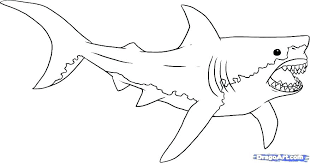 shark coloring pages pdf sharks coloring pages luxury great white shark coloring pages free sharks