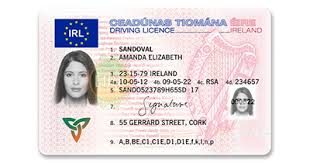 Licence - Irish Drivers Crisetechnology Fake