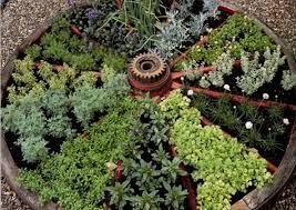 famous wagon wheel herb garden design interesting garden