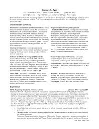 Business Business Analyst Resume Example