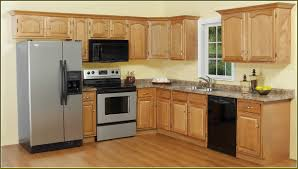 Ideas For Kitchen Cabinets Without Doors | Home Design Ideas