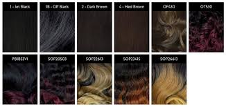 Freetress Wig Color Chart Details About V 001 Freetress Equal Synthetic Premium V Shaped Lace Front Wig Long Wavy