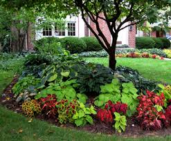 Small Picture Landscaping Around Trees Plants Ideas Interesting Design Ideas