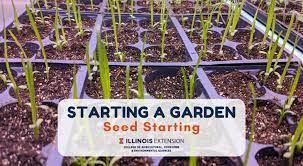starting a garden seed starting