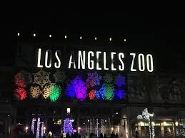 La Zoo Lights 2018 Tickets Franklin Avenue L A Zoo Lights Returns For 2018 With An