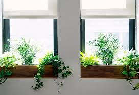 (Image credit: Terrain). Windows sills ...