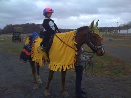 Pony Costume Ideas Costume Ideas Fat Pony And Little Girl Chronicle Forums