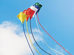 Image result for summer kites
