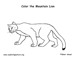 mountain lion coloring pages west texas mountain lion animal coloring pages
