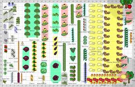 vegetable garden layout design