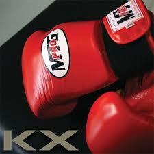 kx tgh220 rub