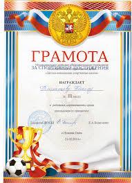 Образец заполнения диплома за спортивные достижения Образец заполнения диплома за спортивные достижения Москва
