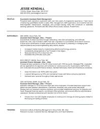 Bank Manager Sample Resume Branch Manager Resume Summary Best Of Bank Manager Sample Resume 4
