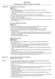 Presales Manager Resume Samples Velvet Jobs