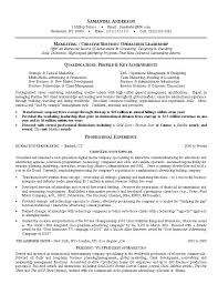 Sample Executive Resume Format Delectable Marketing Resumes Sample 48 Mba Marketing Resume Format Doc Andaleco