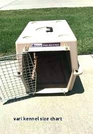 Dog Cage Size Chart Used Dog Kennels For Sale Cheap Localnoon Co