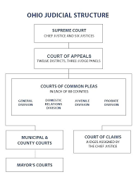 Federal Court Structure Chart 42 True To Life Federal Court Flow Chart