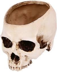 BESTOYARD <b>Halloween Scene Decorations Skull</b> Head Flower ...