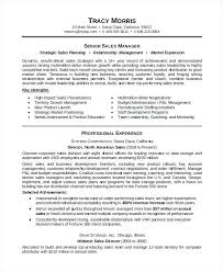 Resume Formats Pdf Resume Template Pdf Free Professional Resume Format For Experienced