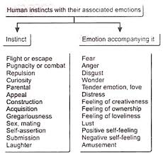 essay on emotions definition characteristics and importance human instincts their associated emotions