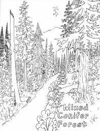 Small Picture Pages For Adults Coloringpageadults Hard Cat Children Hard Forest