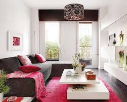 ... Remarkable Design In Decorating Ideas For Small Spaces At Your House :  Awesome Fuchsia Furry Rug ...