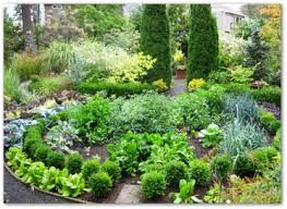 Small Picture Beautiful Vegetable Garden Plans and Ideas